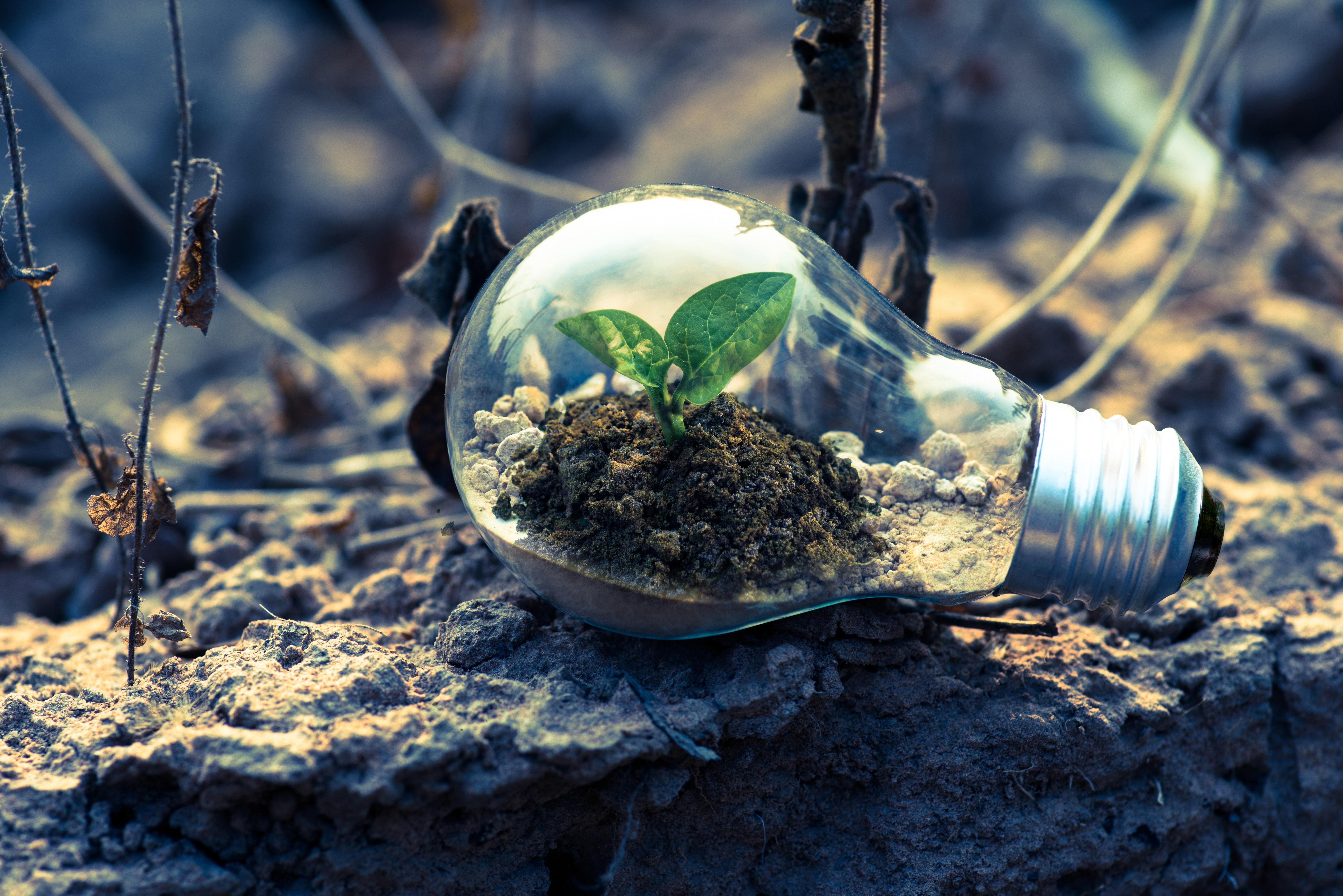 Los Mejores Blogs de Medio Ambiente y Sostenibilidad