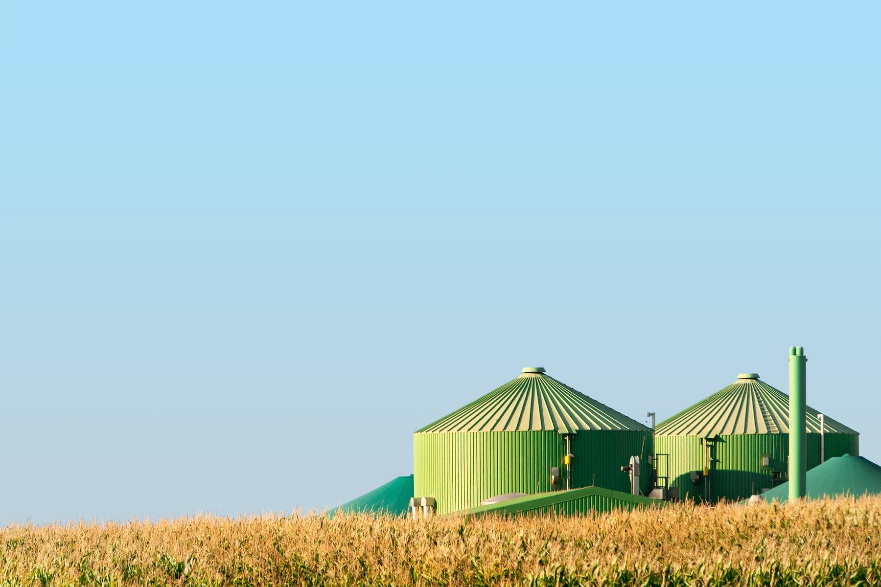 ¿Cómo se obtiene la Bioenergía y para qué sirve?